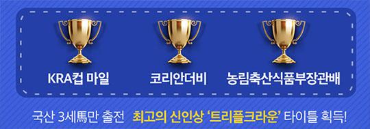 트리플크라운 마사회 트리플크라운 제3관문 서울경마장 농림축산식품부장관배 터치스타맨 2관