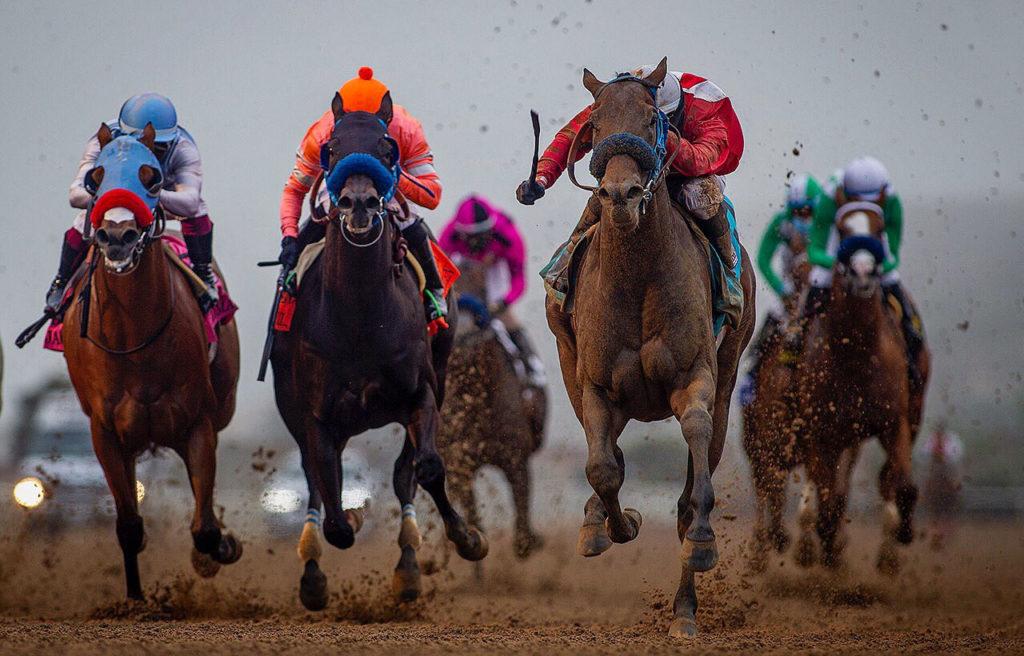 Bing Crosby Stakes 1024x656 미국 델마경마장 빙크로스비 스테익스, Collusion Illusion 코차승부