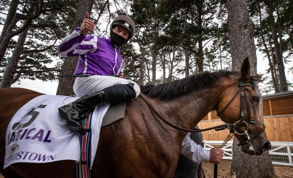 magical horse 1024x625 아이리쉬 챔피언 스테익스 유럽 최강마 매지컬 vs. 가이야스 리벤지 매치