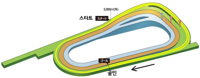 kyoto racecourse 3000 일본 교토경마장 삼관경주 킷카쇼(菊花賞) 콘트레일 무패의 트리플크라운