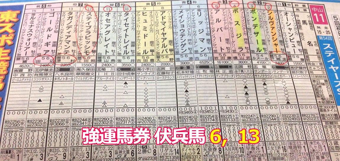 nakayama Stayers Stakes 일본중앙경마 나카야마경마장 스테이어스 스테익스(Stayers Stakes, G2)