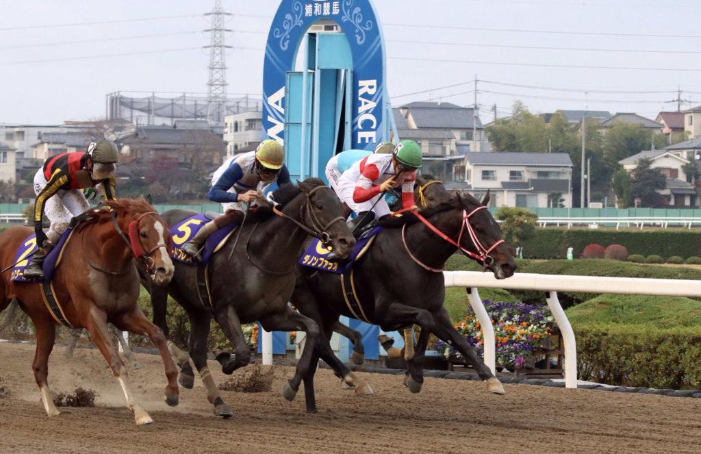 urawa kinen 1024x663 일본지방경마 남관동 우라와 경마장 우라와기념(JpnII), 다논파라오 우승