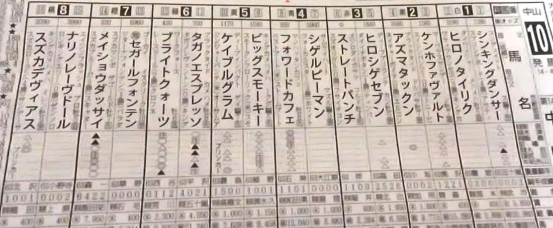 中山大障害 일본중앙경마 장애물경주 나카야마 대장애물(J G1) 메이쇼 닷사이 우승