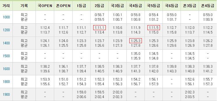 등급거리별기록 13일 부산경마 결과 등급별 신기록 속출! 최강쏜살, 두바이특급