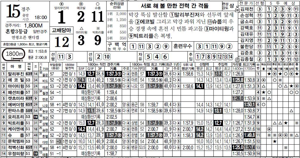 서울경마 스피드예상지 14일 서울경마 한방역전 막경주 15R 고배당을 노려라!