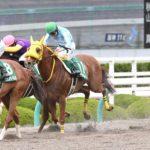 Antares Stakes 150x150 경마 일정표