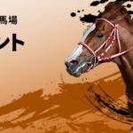 Tokyo Sprint 150x150 경마 일정표