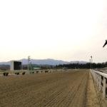 mizusawa racecourse 150x150 경마 일정표