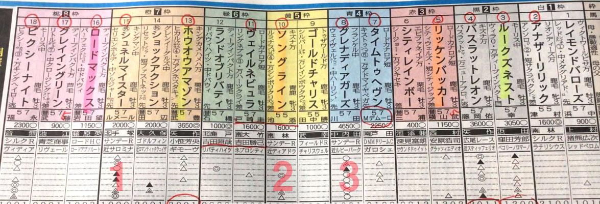 NHKマイルカップ 일본 JRA 도쿄경마장 3세마 G1 대상경주 NHK마일컵 Schnell Meister