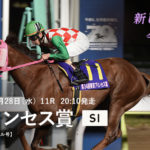 Tokyo Princess Sho 150x150 경마 일정표