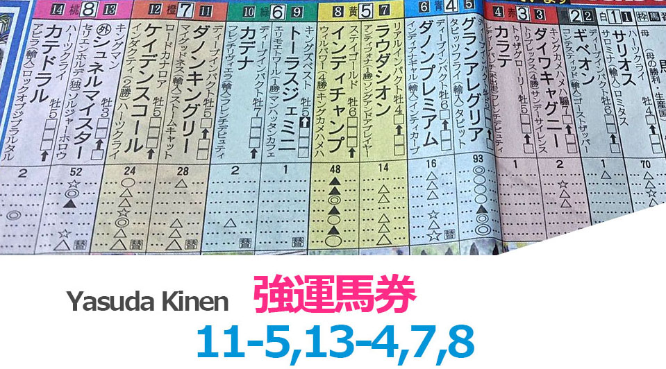 일본경마예상 야스다기념 일본 JRA 도쿄경마장 야스다기념(G1) 다논킹그리(Danon Kingly) 우승