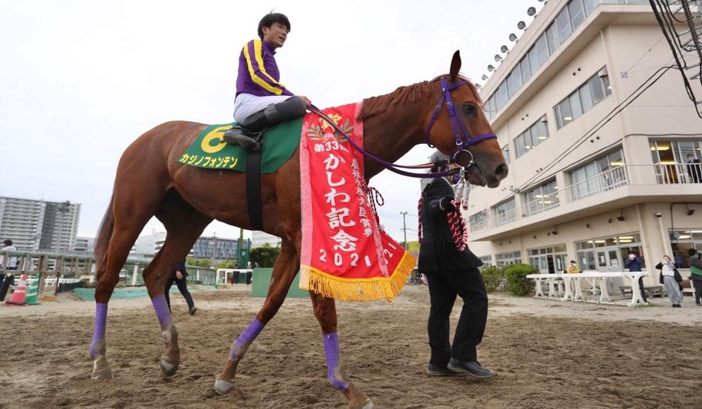 kashiwa kinen winner 일본 후나바시경마 낙마사고와 경주마 역주행, JRA교류 카시와기념 결과
