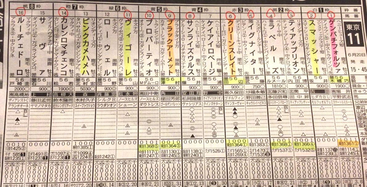 도쿄11 유니콘 스테익스 일본 JRA 도쿄경마장 유니콘 스테익스(Unicorn Stakes, G3) 낙마사고 경주마 사망